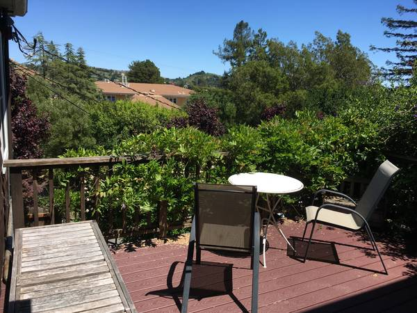 Apartment for Rent in Mill Valley